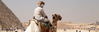 camel driver at Great Pyramids in Giza